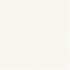 ДВПО 2745x1700x3.2мм Белый